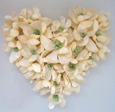 TissueBlossoms2